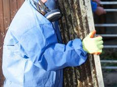 Asbestslachtoffers ruimere keuze geven